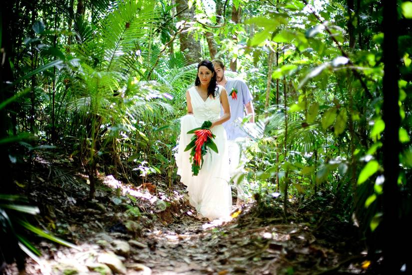 Your Eco-Friendly Wedding Guide https://weddingery.com